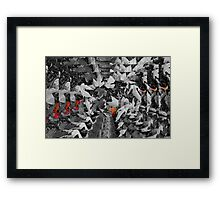 Fall Color Framed Print