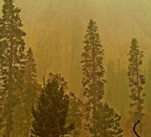 Rim Fire in Yosemite Sticker