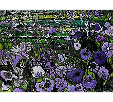 Woodcut Flower Print - Mauve Photographic Print