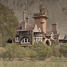 Iandra Castle near Greenethorpe NSW no.2 by julie anne  grattan