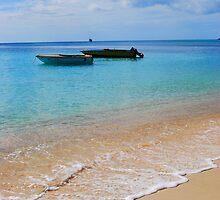 Island getaway- Grenada  by Jeddaphoto