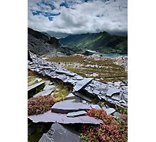 north Wales : Slate & Flowers 2 Photographic Print