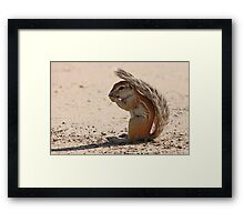 Protecting Myself from the Sun Framed Print