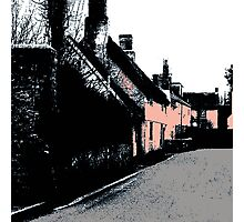 Somerset Cottages Photographic Print