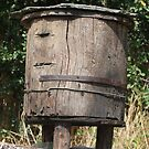 trunk beehive by APIDEA