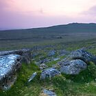 Dartmoor  Devon by DIANE  FIFIELD