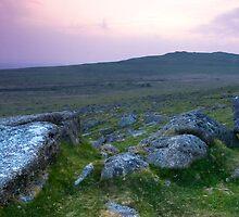 Dartmoor  Devon by DIANE  FIFIELD