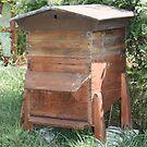 ruche à cadres trapézoïdo-rectangulaires by APIDEA