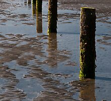 Tyrella Beach by Alan McMorris