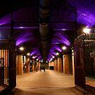~ Granary Wharfe, Leeds, Floodlit In Purple ~ by Sandra Cockayne