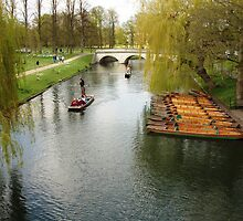 Punts at Cambridge by Randy Sprout