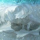 2004 Winter Windshield Ice by yeimaya