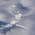 2010 01-23 Crow angel by yeimaya