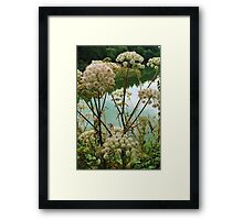 Summer by the River Framed Print