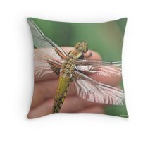 Broad-bodied Chaser on the photographer's hand B Throw Pillow