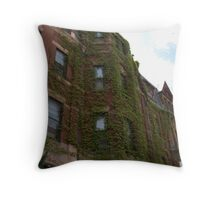 Back Bay Vine Brownstone Throw Pillow