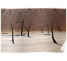Ghosts of the Deadvlei I Poster