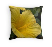 Back Bay Yellow Flower Close Up Throw Pillow