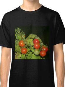 Tomatoes and Rain Classic T-Shirt