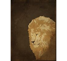 The Lions In The Streets Photographic Print