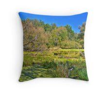 Swamp land (View Large) Throw Pillow