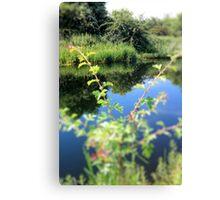 Summer-Blink Canvas Print