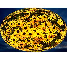 Floral Orb Photographic Print