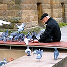 Feeding the birds by Ali Brown