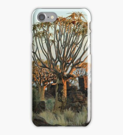 Quiver Tree Forest at Dusk iPhone Case/Skin