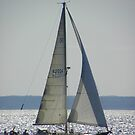 Sailing on a Sunny Day by MaryinMaine
