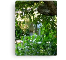 water through the leaves Canvas Print