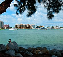 South Florida Sunday Afternoon by Robert H Carney