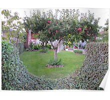Apple Tree Garden Poster
