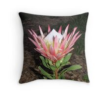 Australian Wild Flower Throw Pillow