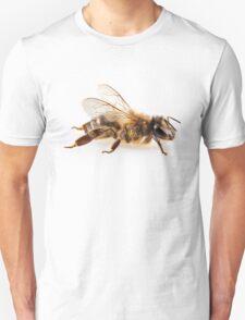 Bee species apis mellifera common name Western honey bee or European honey bee T-Shirt