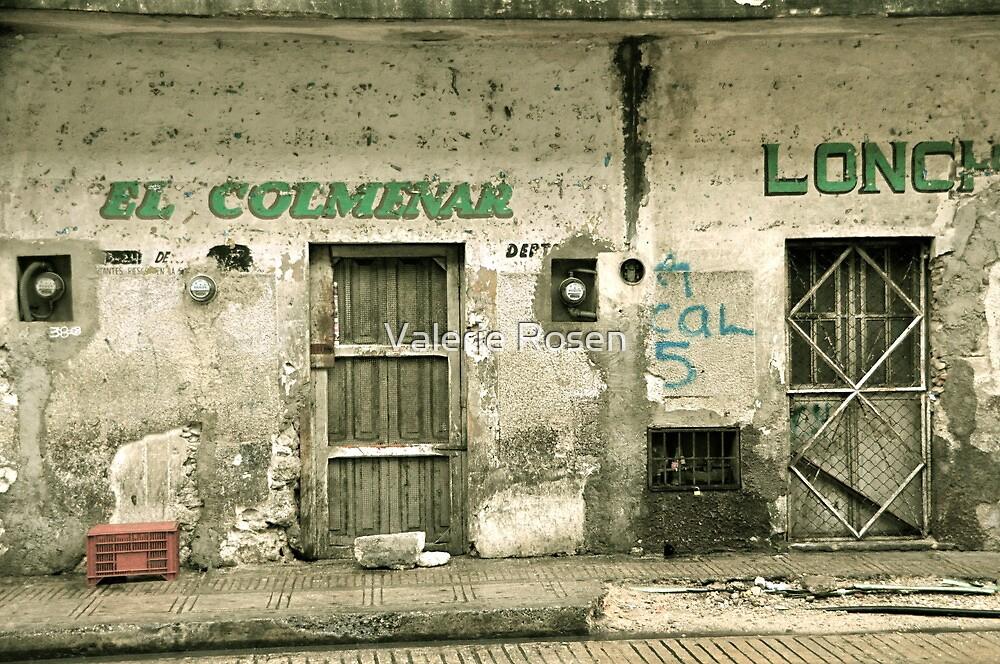 El Colmenar by Valerie Rosen