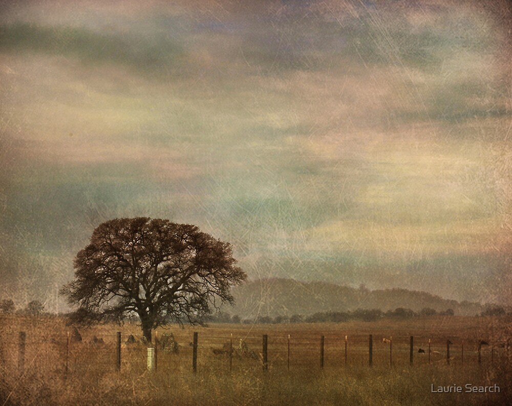 The Lonely Days by Laurie Search