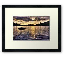 Goldwater Framed Print