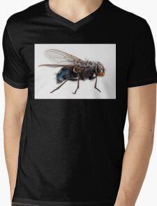 Blue bottle fly species calliphora vomitoria isolated on white background Mens V-Neck T-Shirt