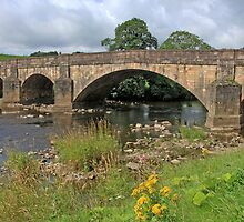 Edisford Bridge Clitheroe by Tom Curtis