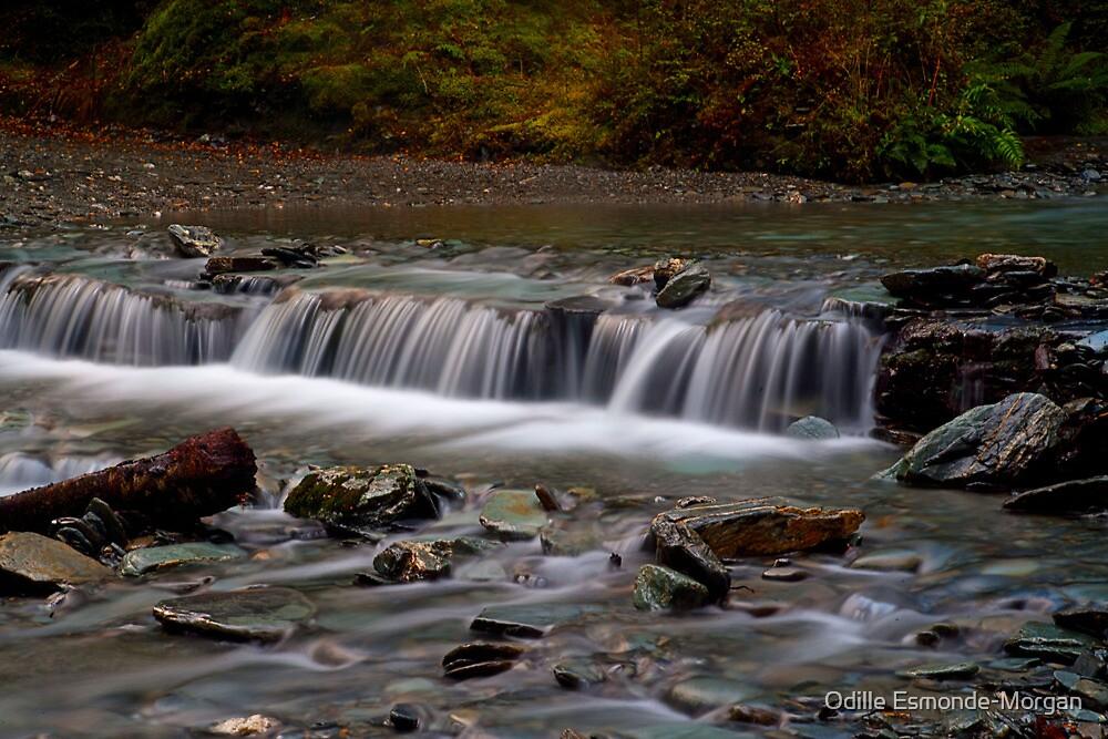 Paradise Valley Cascades by Odille Esmonde-Morgan