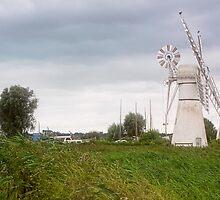Thurne Windmill by Lynne Morris