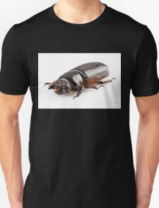 Beetle Aceraius grandis from Java Island in Indonesia isolated on white background Unisex T-Shirt