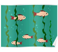 The small school of fish under water Poster
