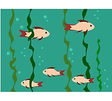The small school of fish under water Photographic Print