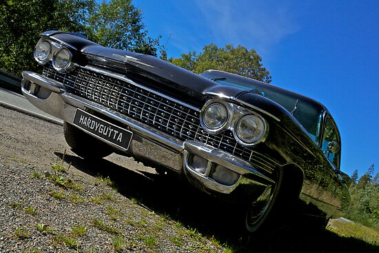 Riding with the king . Elvis Presley. Cadillac. Wedding Car . Views ( 496) favorited by (1) thanks ! by © Andrzej Goszcz,M.D. Ph.D