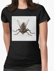 Flesh fly species sarcophaga carnaria isolated on white background  Womens Fitted T-Shirt