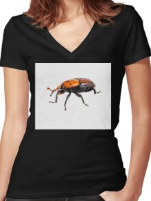 red palm weevil isolated on white background Women's Fitted V-Neck T-Shirt