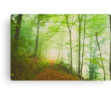 along the undiscovered path Canvas Print