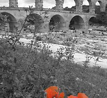Pont du Gard by Andre Rickerby